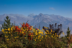 Swiss Alps In Autumn Royalty Free Stock Photo