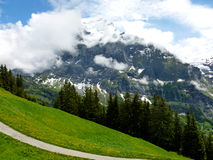 Swiss Alps. A beautifull view of swiss Alps on summer Royalty Free Stock Photo