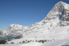 Swiss Alps - Bernese Mountains Grindelwald Eiger Jungfrau royalty free stock image