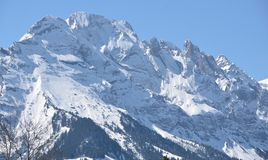 Swiss Alps - Bernese Mountains Grindelwald Eiger Jungfrau royalty free stock photos