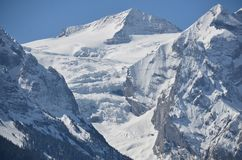 Swiss Alps - Bernese Mountains Grindelwald royalty free stock photo
