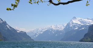 Swiss Alps - Bernese Mountains royalty free stock photos