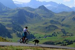 Adelboden/Silleren: Driving with a Trotinett downhill stock images