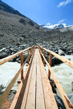 Swiss Alps Glacier Nature Trail Bridge Royalty Free Stock Images