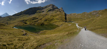 Swiss Alps - Grindelwald. Tourist route royalty free stock photography