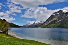 Swiss Alps-lake Silvaplana Royalty Free Stock Photos