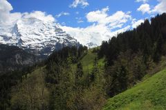 Swiss Alps. Landscape near Interlaken in Europe Royalty Free Stock Photos