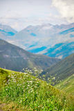 Swiss Alps landscape Stock Images