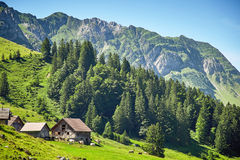 Swiss Alps landscape Royalty Free Stock Photos