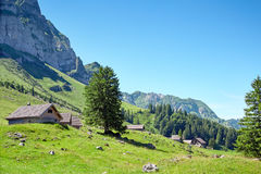 Swiss Alps landscape Royalty Free Stock Photo