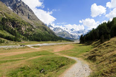 Swiss Alps Nature Trail Royalty Free Stock Image