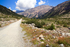Swiss Alps Nature Trail Royalty Free Stock Photo