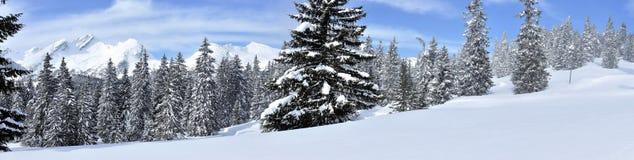 Swiss alps panorama 1 Royalty Free Stock Image