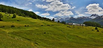 Swiss Alps-panoramic outlook of the Bos-cha Royalty Free Stock Image