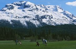Swiss Alps: Playing golf at Samedan/Celerina stock photos