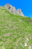 Swiss Alps. Resort Engelberg. Traveling on foot through the Swis. S countryside and mountain tops Royalty Free Stock Images