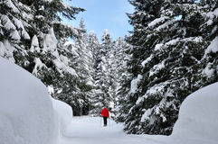 Swiss alps snow walking. Swiss alps, hiker with snowshoe Stock Photo