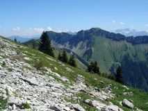 Swiss Alps by summer Stock Photography