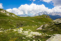 Swiss alps. Summer day in Swiss alps stock photo