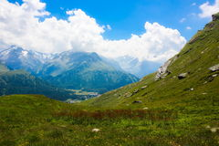 Swiss alps. Summer day in Swiss alps royalty free stock photography