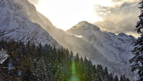 Swiss alps sunlight. Swiss alps landscape with sunlight from the forest near to San Bernardino Stock Photos