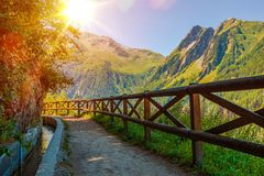 Swiss Alps Sunny Trail Royalty Free Stock Images