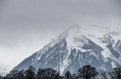 Swiss alps in winter Royalty Free Stock Photo