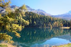 Swiss autumn lake stock images