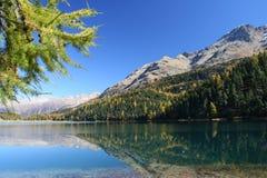 Swiss autumn lake royalty free stock images