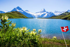 Swiss beauty, Schreckhorn and Wetterhorn, Switzerland. Royalty Free Stock Photo