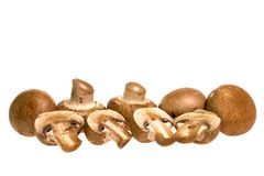 Swiss Brown Mushrooms Stock Photography