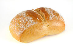 Swiss bun Royalty Free Stock Image