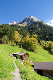 Swiss chalet in Alps. Scenic view of traditional Swiss chalets on green mountainside with forest in background, Chli Windgaellen, Uri, Switzerland royalty free stock photo