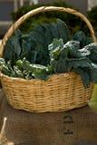 Swiss chard. A basket of swiss chard on farmers market Stock Image