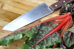 Swiss chard Stock Photos