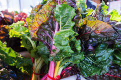 Swiss chard at market Royalty Free Stock Photography