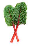 Swiss chard. Two leaves of Mangold or Swiss chard isolated on white stock photo