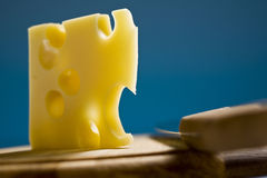 Swiss cheese emmenthal Stock Image