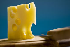 Swiss cheese emmenthal Royalty Free Stock Photo