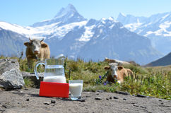 Swiss chocolate and jug of milk Stock Photos