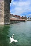 Swiss city Lucerne. Capel-bridge on the lake in swiss city Luzern Stock Images