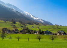 Swiss Country side. Green countryside at the base of swiss mountains Royalty Free Stock Image