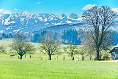 The Swiss Countryside Stock Photos