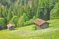 Swiss countryside in summer. Royalty Free Stock Image