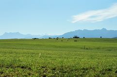 Swiss countryside on a sunny day stock photography