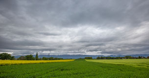Swiss Farmland Stock Image