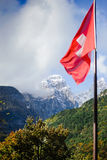 The flag on a background of mountains. Swiss flag flutters in the wind on a background of mountains. There is a tree in the foreground, side of mountains Stock Image