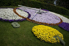 Swiss Flower Clock Stock Photos