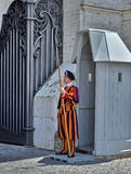 Swiss Guard of Vatican City Royalty Free Stock Image