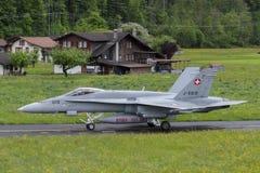 Swiss Hornet Stock Image